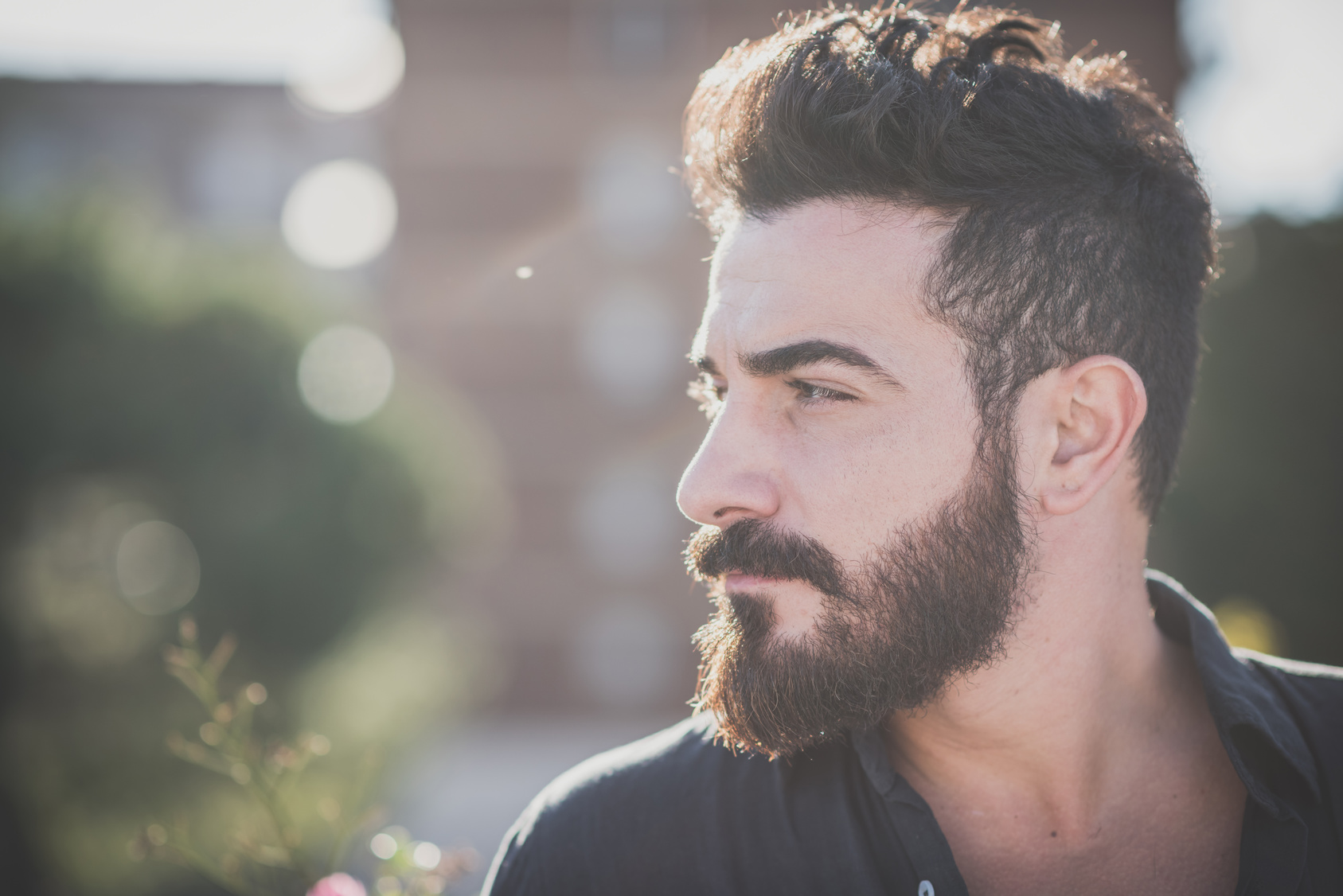 beard grow xl