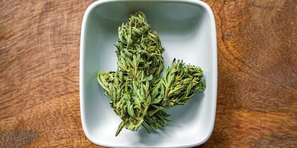 Use of the medicinal marijuana
